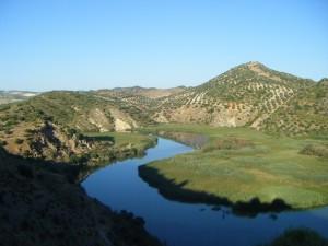 embalse malpasillo Reservas Naturales de los Embalses de Malpasillo y Cordobilla