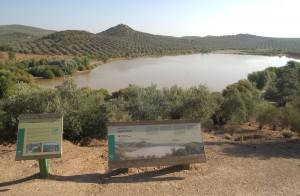 Reserva Natural de la Laguna Dulce y Amarga