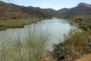 meandro rio genil badolatos2 (Río Genil)