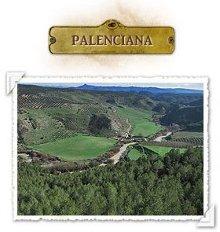 pueblo_palenciana Palenciana
